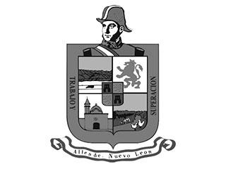 gobierno del municipio de allende